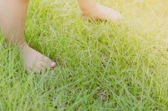 Pieds de bébé sur la pelouse
