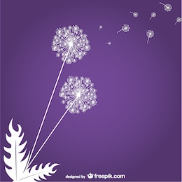 Pissenlits sur fond violet