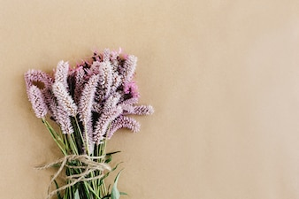 Plante à fleurs lilas