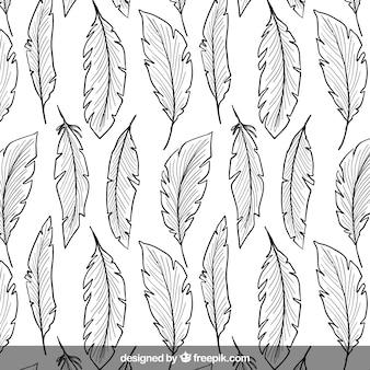 plumes dessinés à la main motif