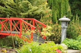 Jardin japonais vecteurs et photos gratuites for Pont jardin zen