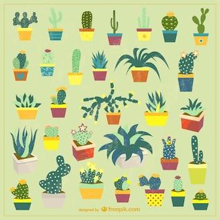 Pot ensemble de vecteur de cactus