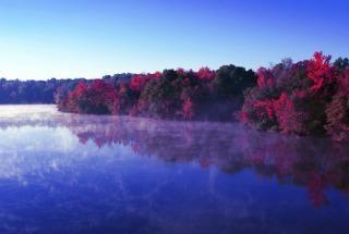rivière automne réflexions
