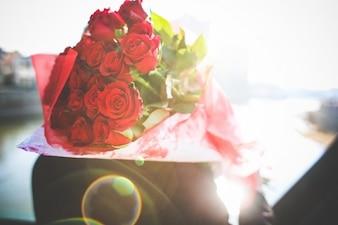 Rose Bouquet avec la luminosité du soleil