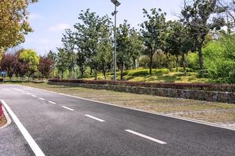 Route goudronnée dans un environnement naturel