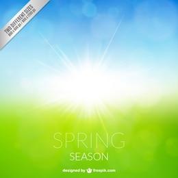 saison Spring background