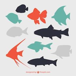 Silhouettes de poissons plats