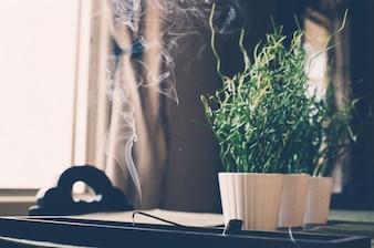 Fumer l'encens