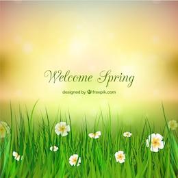 Spring background avec un champ