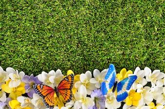 Spring fond frontière avec des papillons