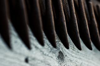 Teeths acier rouillé