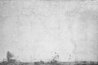 Texture de mur avec de la peinture endommagée