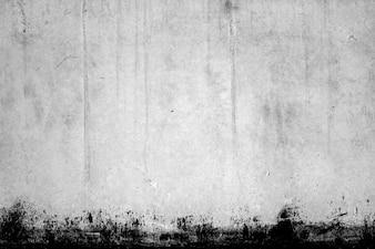 Texture de mur blanc avec bord noir