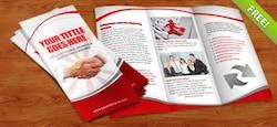 http://img.freepik.com/photos-libre/tri-fold-brochure-psd-template_31-2582.jpg?size=250&ext=jpg