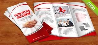 Tri Fold Brochure PSD Template