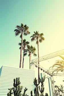 Vacances d'été Voyage Concept urbain. Beautiful Palms on Urban Background. Toning.