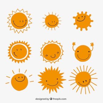 Variété de soleils mignon