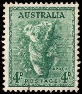 vert koala timbre