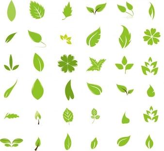 verts des éléments de conception de feuilles