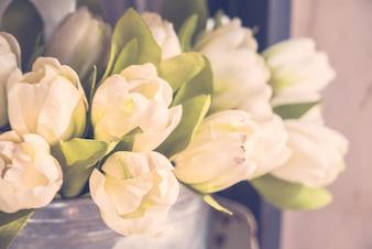 Vintage fleur blanche