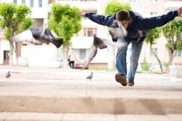 voler des colombes