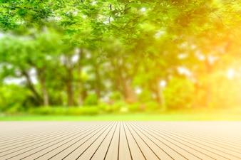 Vue sur le parc verdoyant