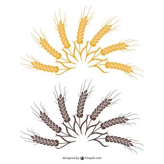 Vecteur de fan de blé