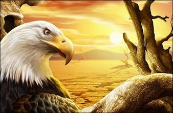 aguda mirada de águila en el sol del desierto psd