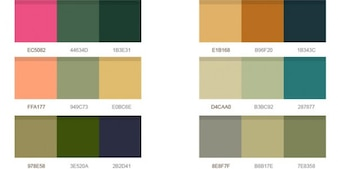 paletas de colores maravillosos psd