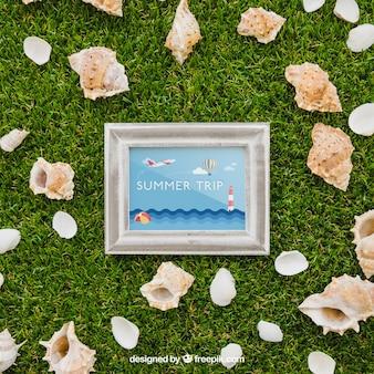 Cadre et coquilles sur l'herbe