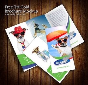 Coloré conception de la brochure maquette modèle psd