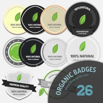 Distintivi organico set di icone