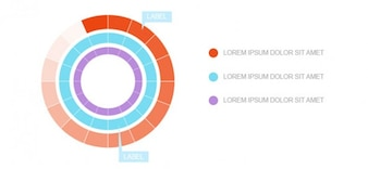 Libero modello infografica psd