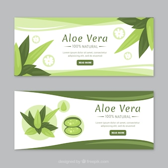 Aloe vera medicine banner