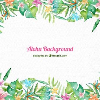 Aloha frame background