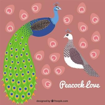 Amour de paon