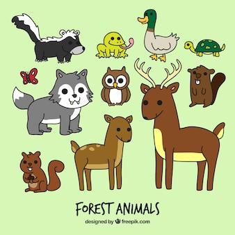 animaux de la forêt de bande dessinée mis