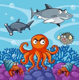 Animaux de mer vivant sous l'océan