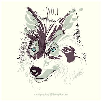 Aquarelle fond de loup