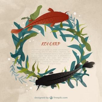 Aquarelle modèle carpe koï