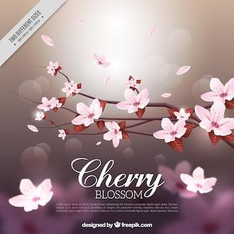Arrière-plan flou de bokeh avec branches et fleurs de cerisier