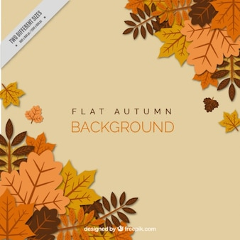 Autumn leaves de style plat, fond