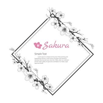 Cadre de fleur de Sakura. Dessin et croquis sur fond blanc.