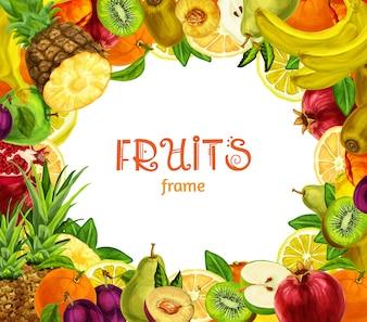 Cadre de fruits exotiques