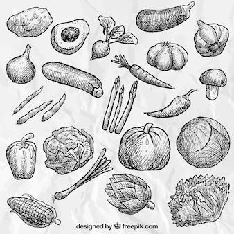 Collecte de légumes dessinés à la main