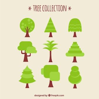 Collection d'arbres en design plat