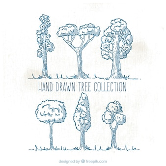 Collection d'arbres Hand-drawn