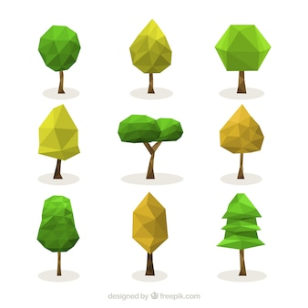Collection d'arbres polygonales