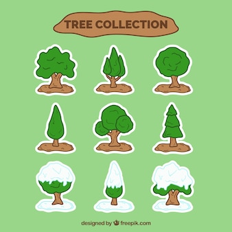 Collection d'arbres verts et neigeux