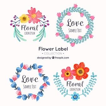 Collection d'autocollants assez floraux en style aquarelle